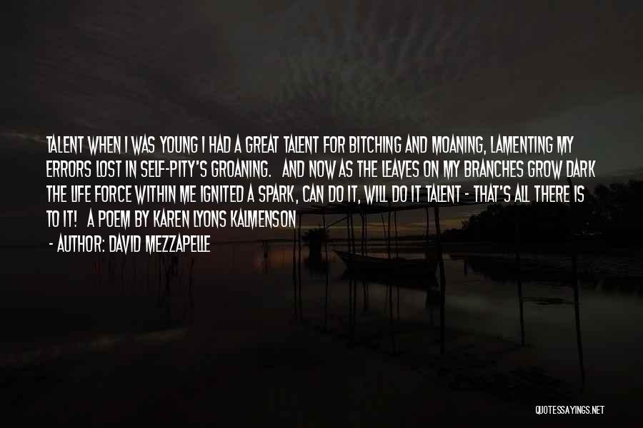 David Mezzapelle Quotes 1087431