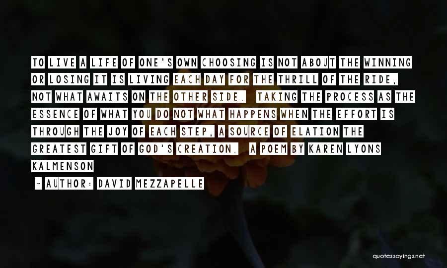David Mezzapelle Quotes 1408221