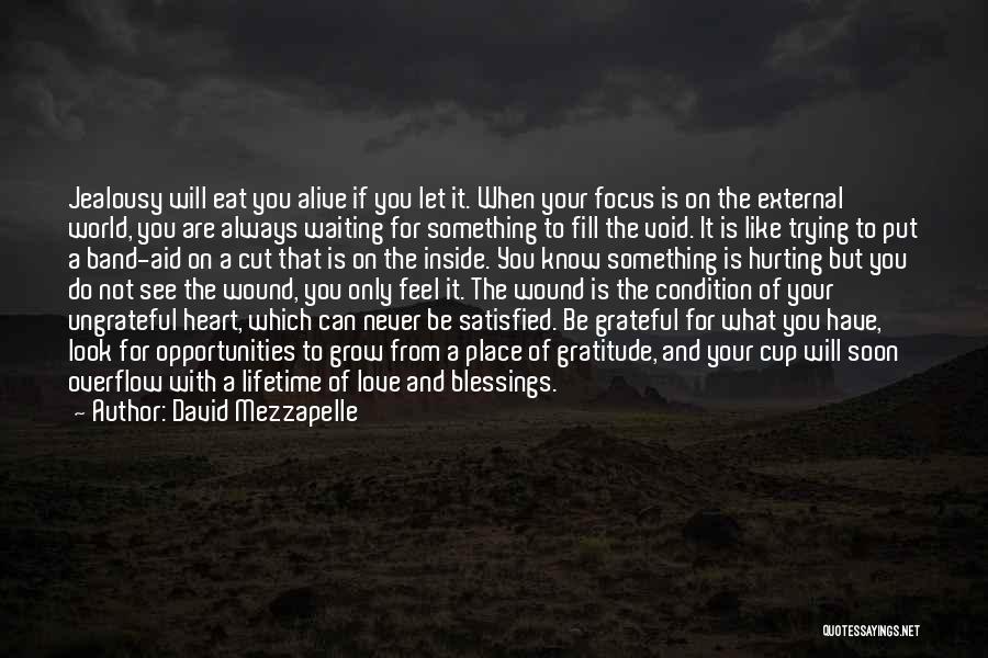 David Mezzapelle Quotes 1730877