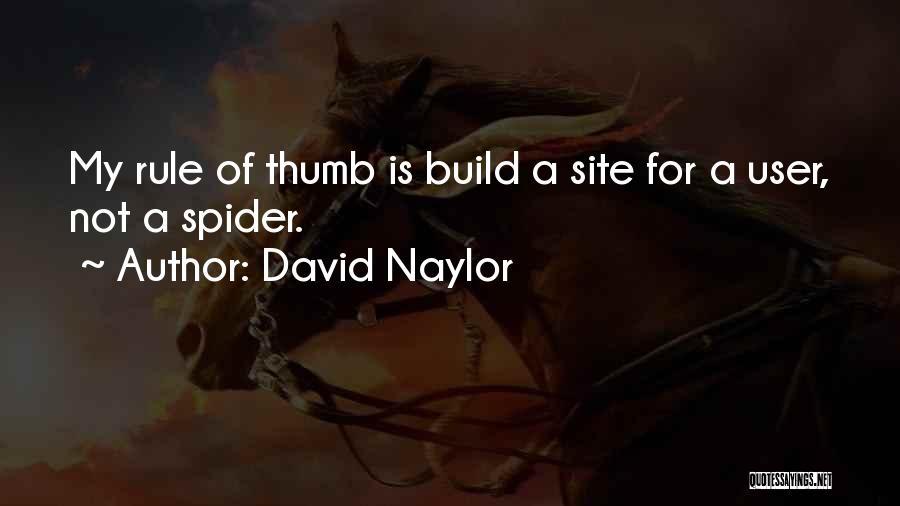 David Naylor Quotes 843337