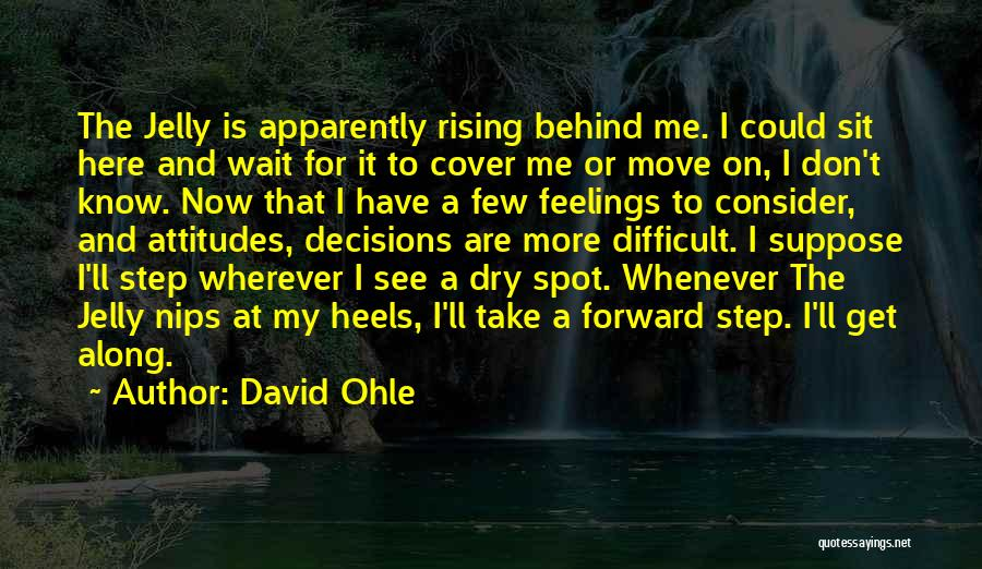 David Ohle Quotes 2225569