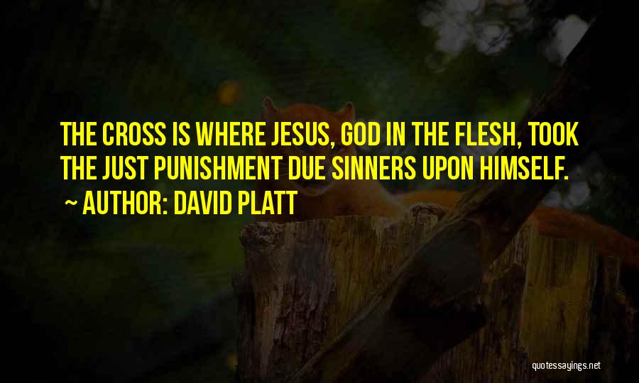 David Platt Quotes 1090234