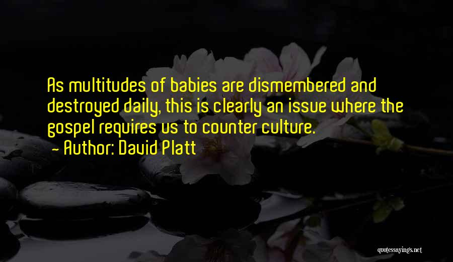 David Platt Quotes 1510246