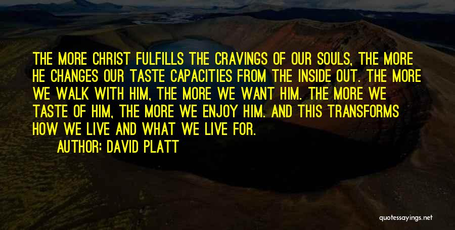 David Platt Quotes 358768