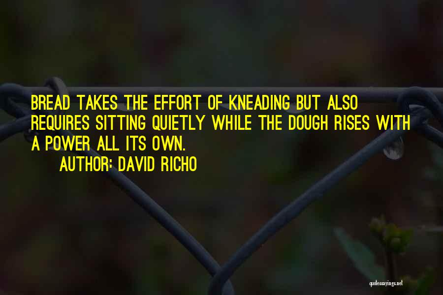 David Richo Quotes 1202623