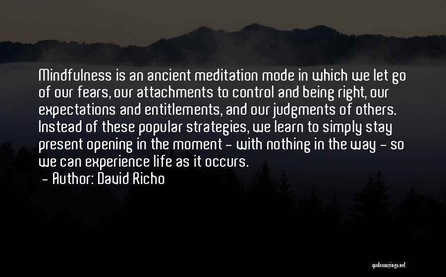 David Richo Quotes 1245626