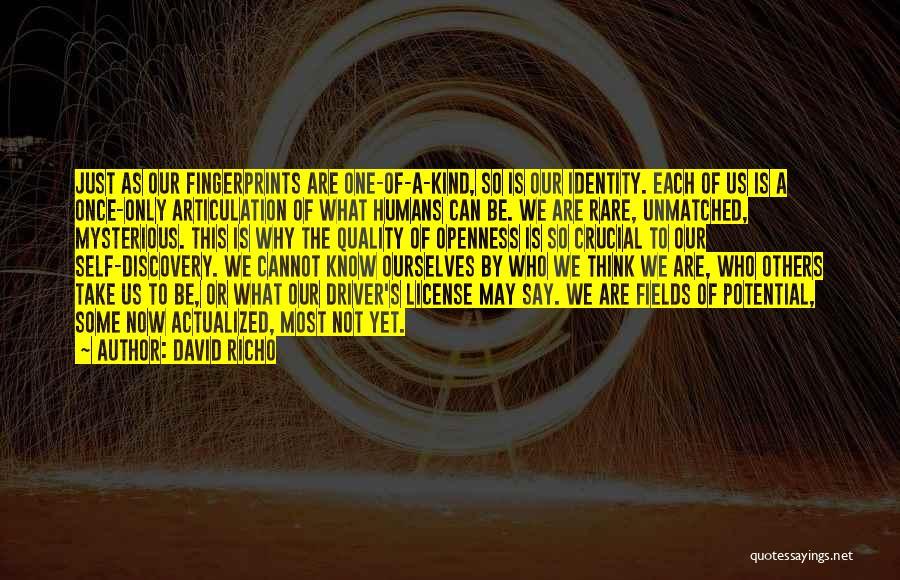 David Richo Quotes 1252211
