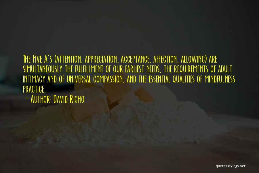 David Richo Quotes 1281667