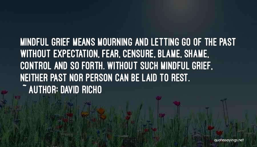 David Richo Quotes 1730590