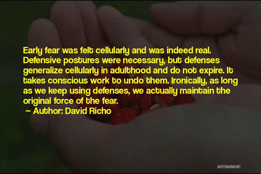 David Richo Quotes 1940823