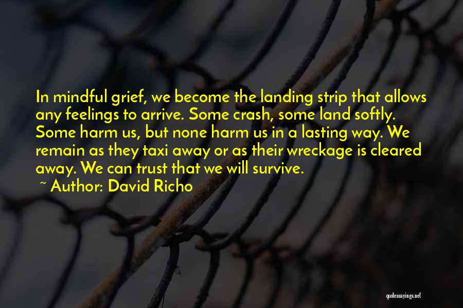 David Richo Quotes 2242385