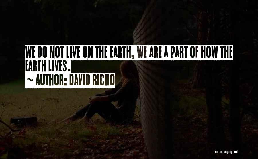 David Richo Quotes 441614
