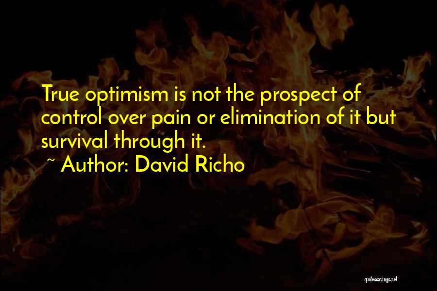 David Richo Quotes 709219