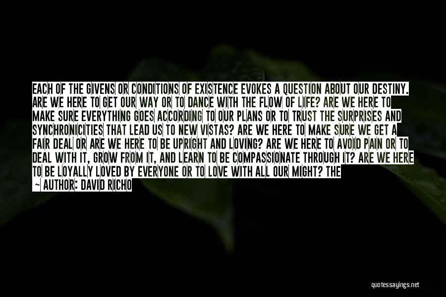 David Richo Quotes 858208