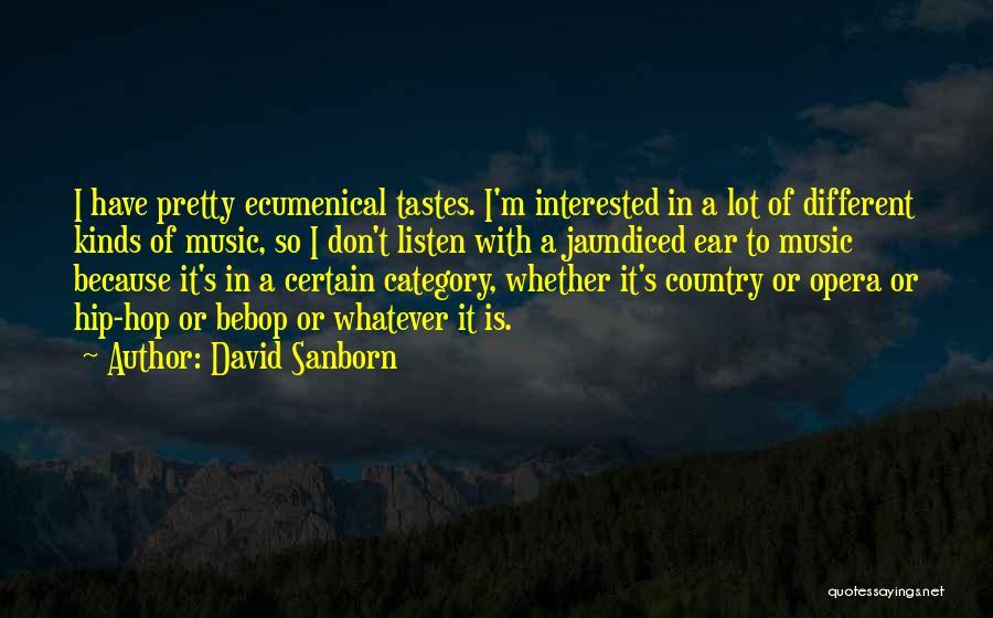 David Sanborn Quotes 1054821