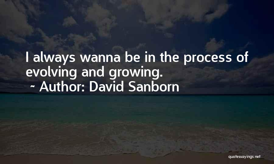 David Sanborn Quotes 1259118
