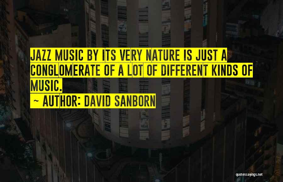 David Sanborn Quotes 1689225