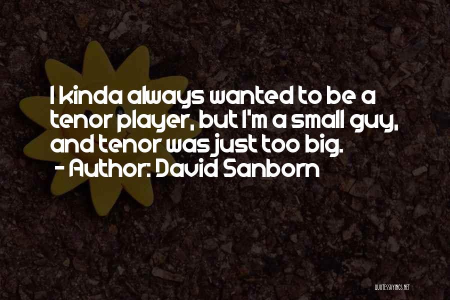 David Sanborn Quotes 1797252