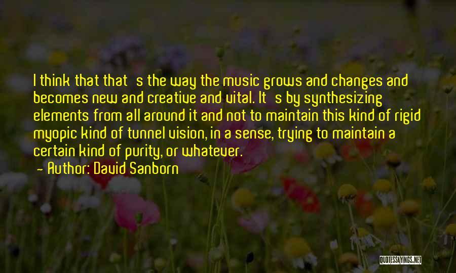 David Sanborn Quotes 2070045