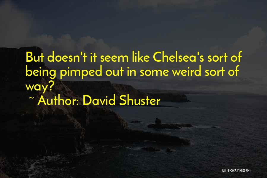 David Shuster Quotes 1600246