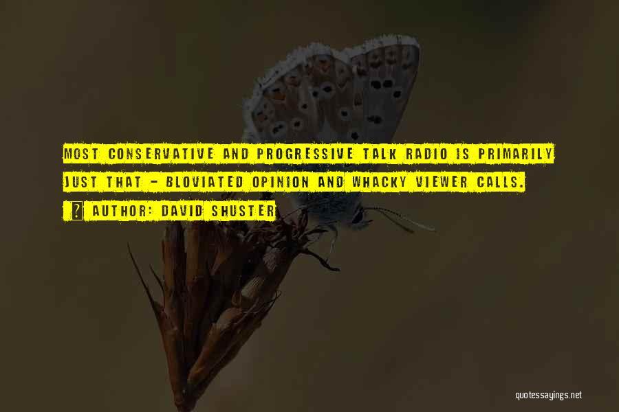 David Shuster Quotes 699928