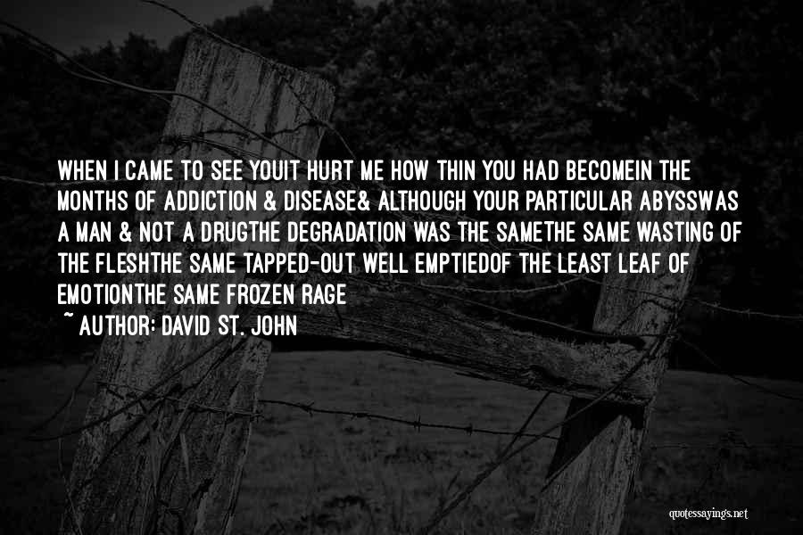 David St. John Quotes 1276827