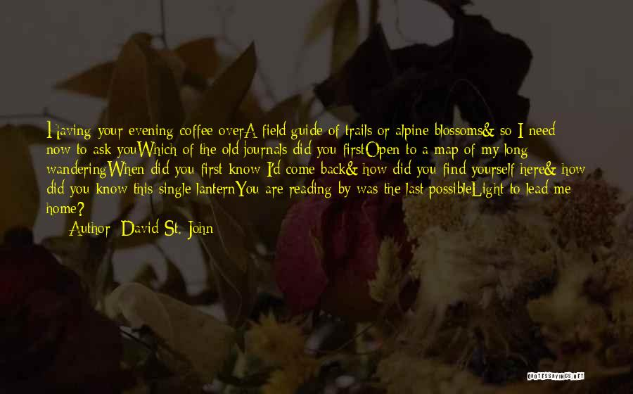 David St. John Quotes 1845510