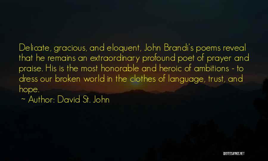 David St. John Quotes 1860162