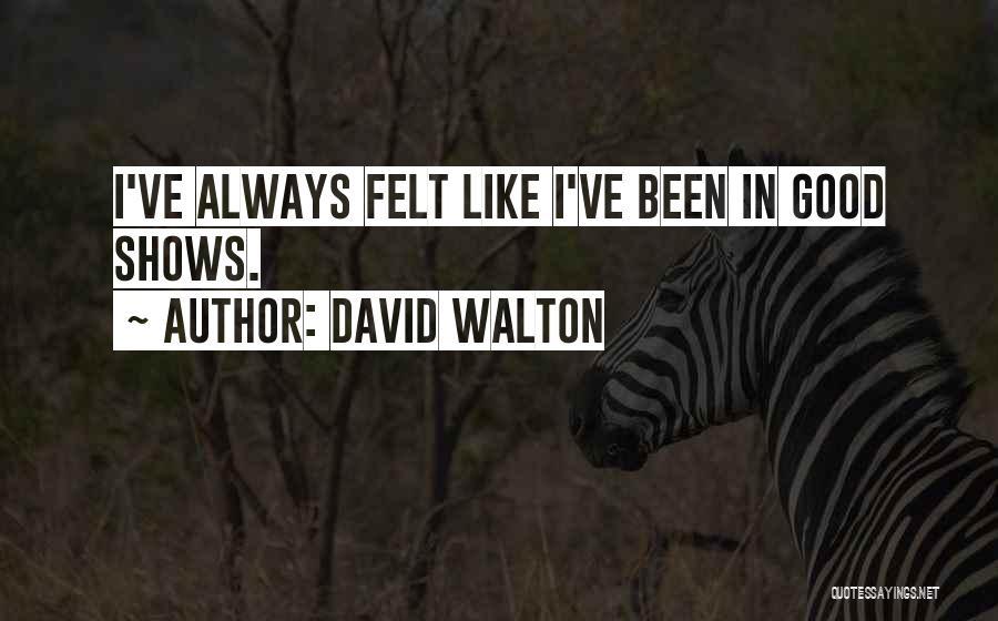 David Walton Quotes 126985