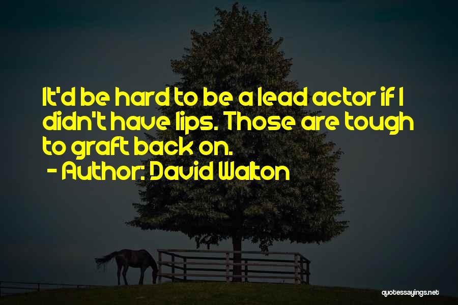 David Walton Quotes 1613810