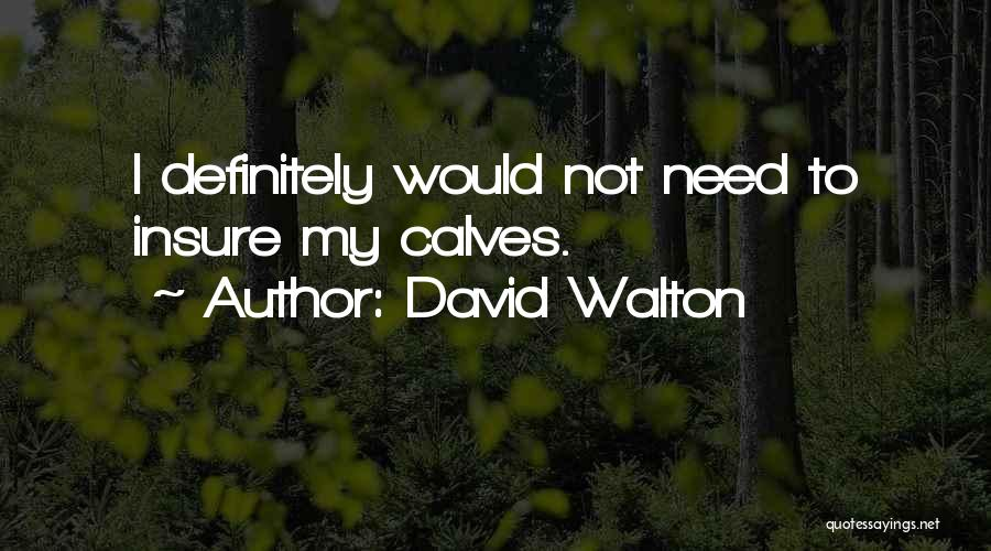 David Walton Quotes 1700649