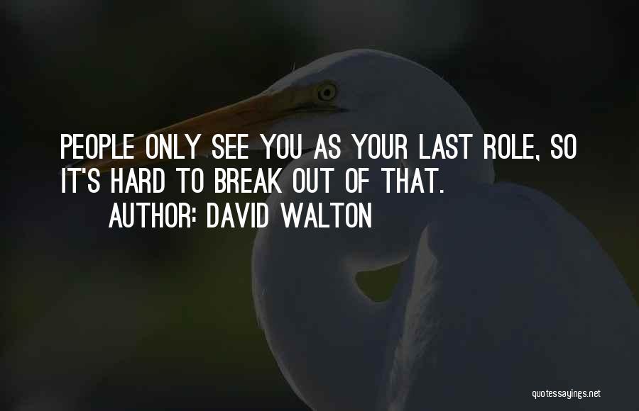 David Walton Quotes 1735479