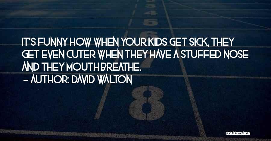 David Walton Quotes 560309