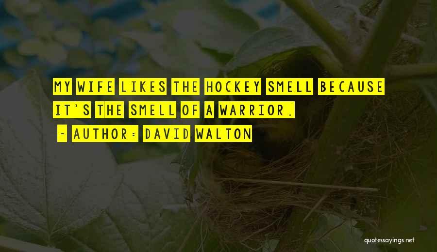 David Walton Quotes 630746