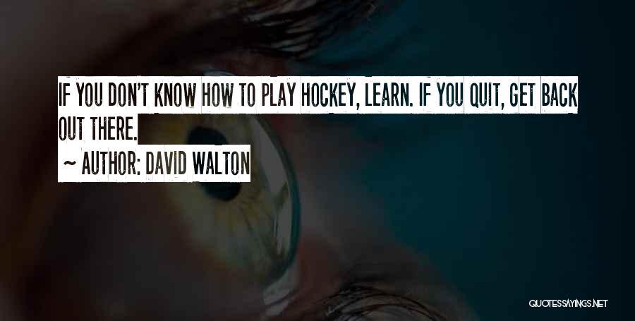 David Walton Quotes 708569