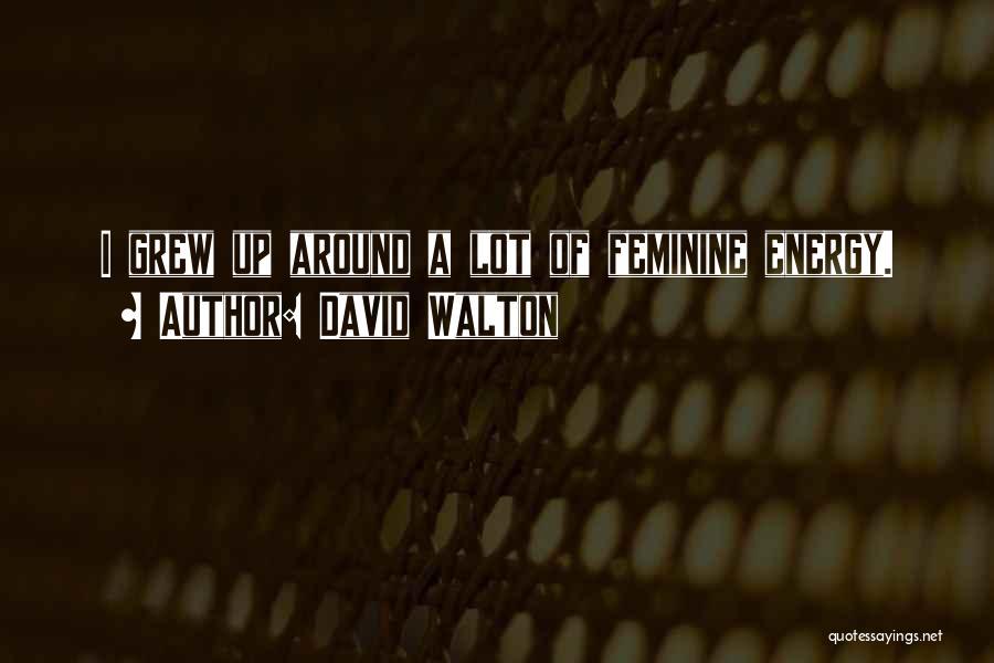David Walton Quotes 733003