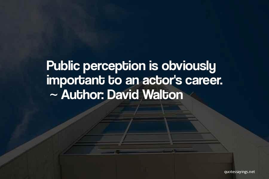 David Walton Quotes 829851