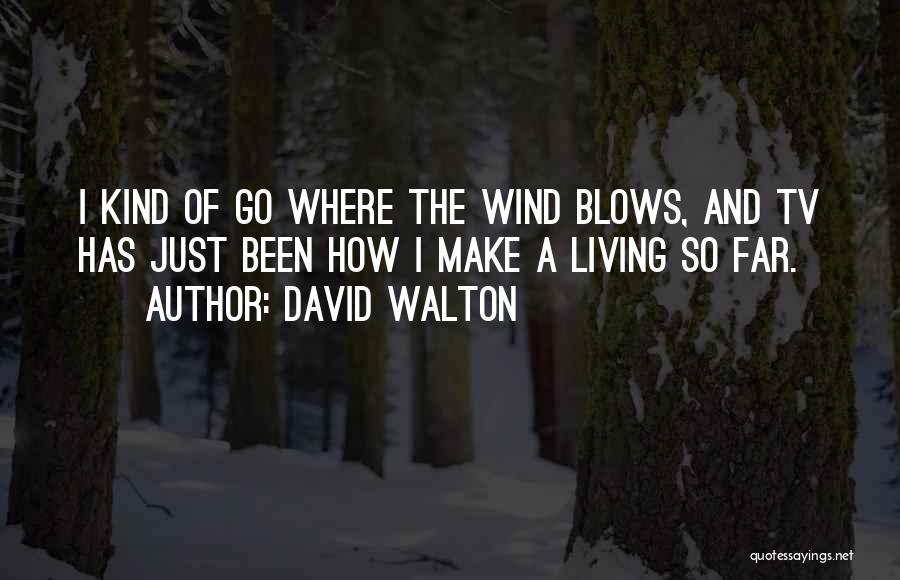 David Walton Quotes 922075