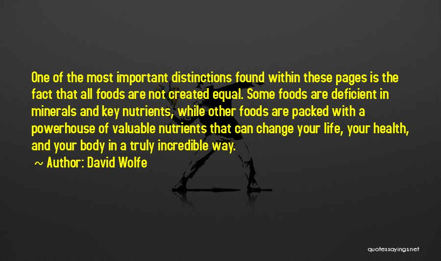 David Wolfe Quotes 1049979