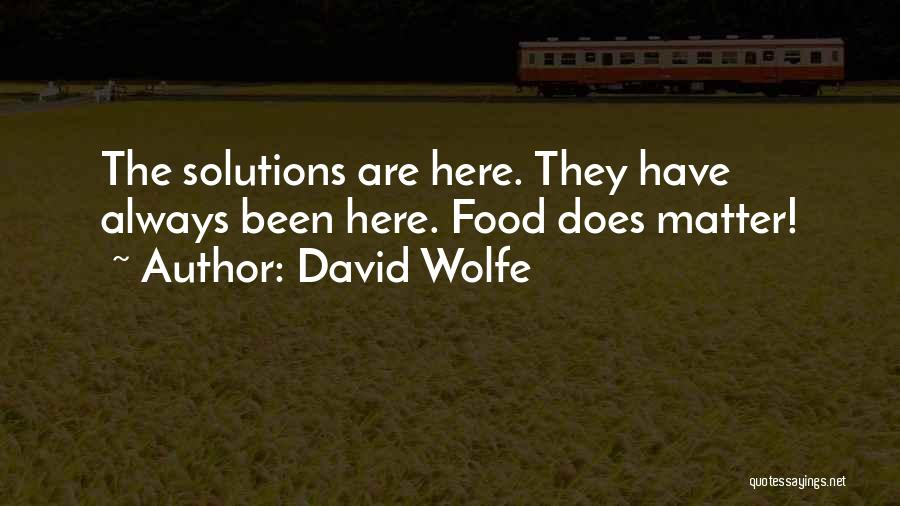 David Wolfe Quotes 1157998
