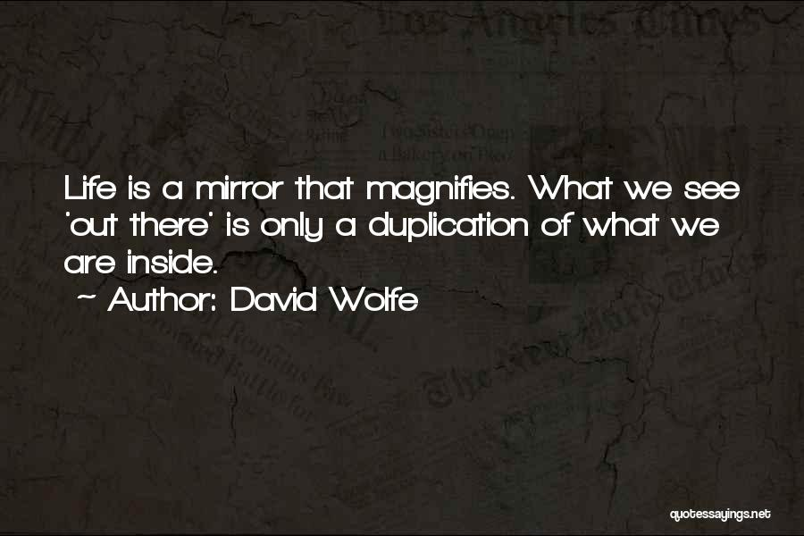David Wolfe Quotes 1184938