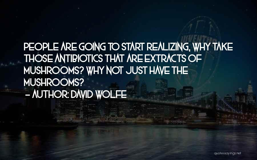 David Wolfe Quotes 1186844