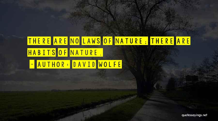 David Wolfe Quotes 1223545