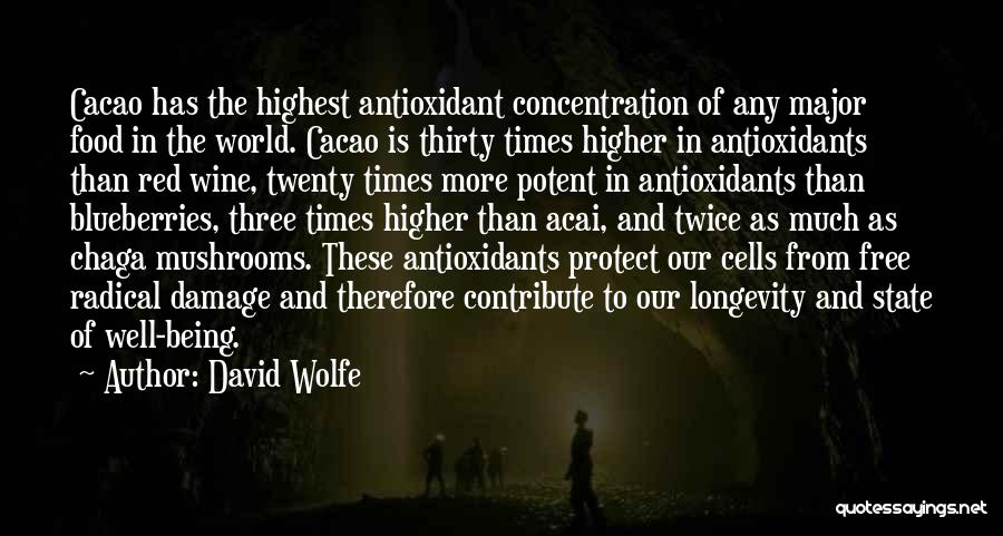 David Wolfe Quotes 1277566