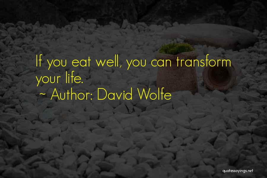 David Wolfe Quotes 1319691