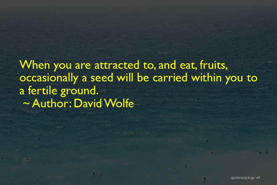 David Wolfe Quotes 1352795