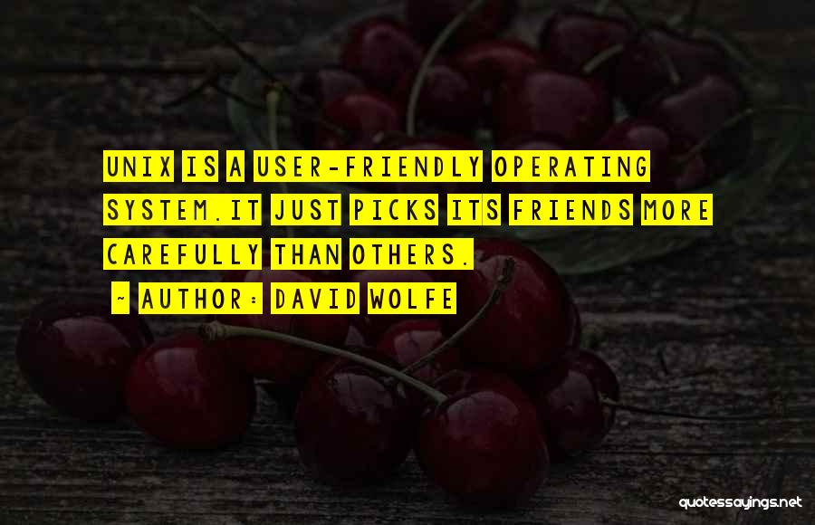 David Wolfe Quotes 1454955