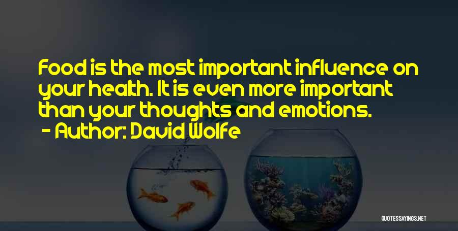 David Wolfe Quotes 1559627