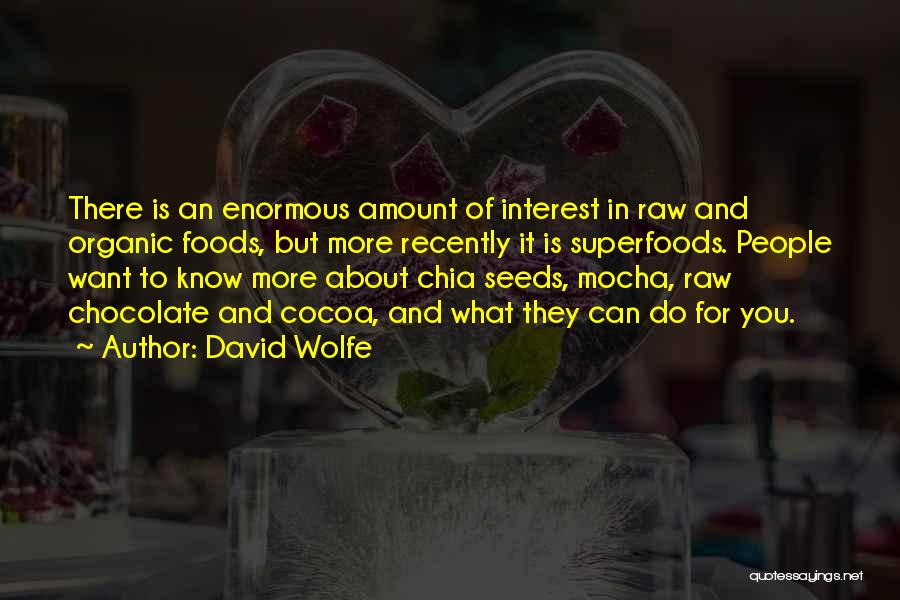 David Wolfe Quotes 1693075