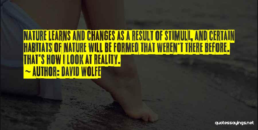 David Wolfe Quotes 172533